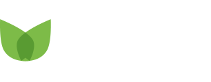 Wakaba e-commerce invest AB